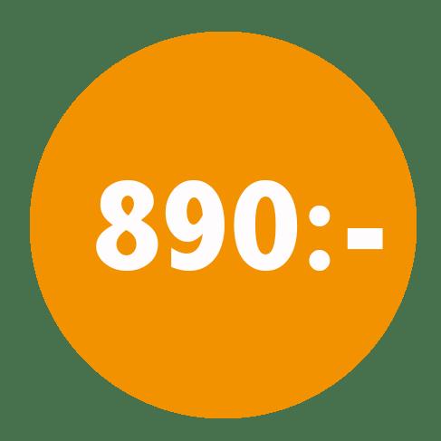 symbol visande priset 890 för en kontrollplan